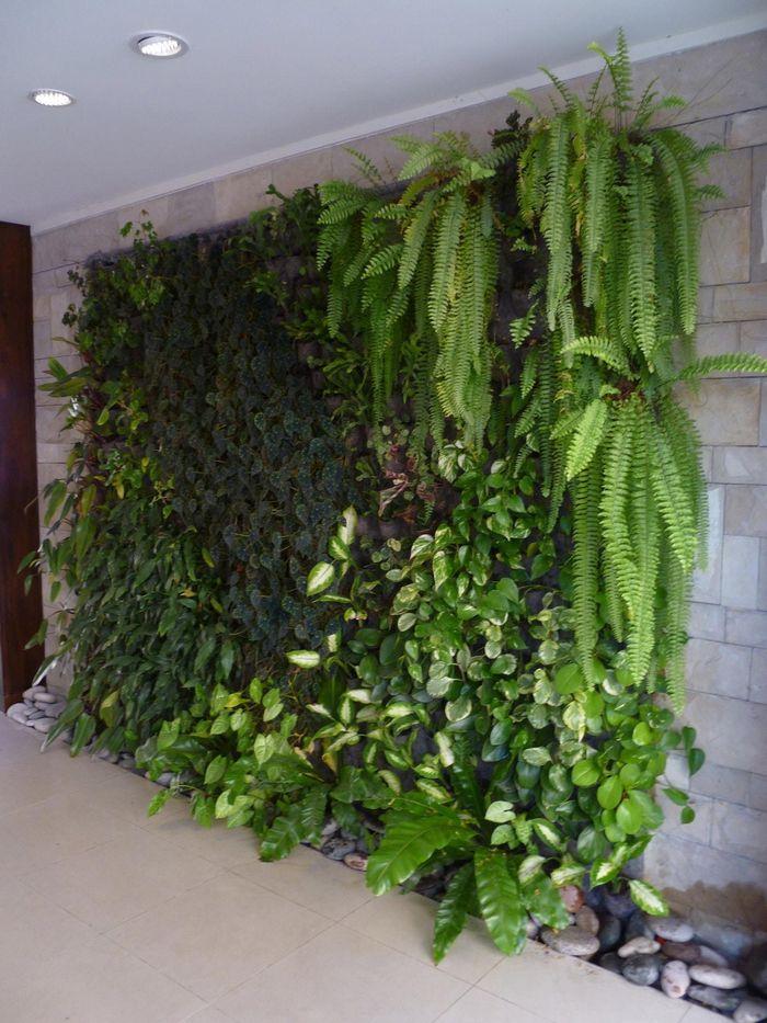 Arma tu propio jard n vertical - Vallas decorativas para jardin ...