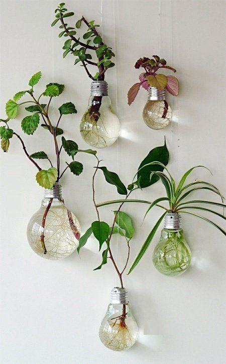 Pequeñas macetas hechas con bombillas recicladas